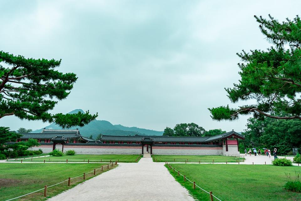 Découvrir le voyage écologique et enjeu environnemental en Corée du Sud